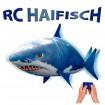 RC Ferngesteuerter fliegender Haifisch, Flying Fish, Ballon-Fisch mit Hai-Motiv für Kinder